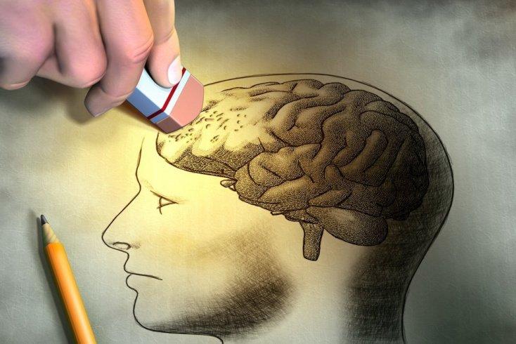 Что происходит с мозгом?