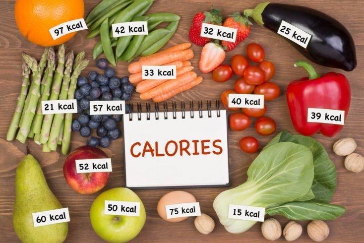 Питание как источник калорий