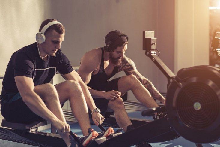 Виды гребных тренажеров для фитнеса