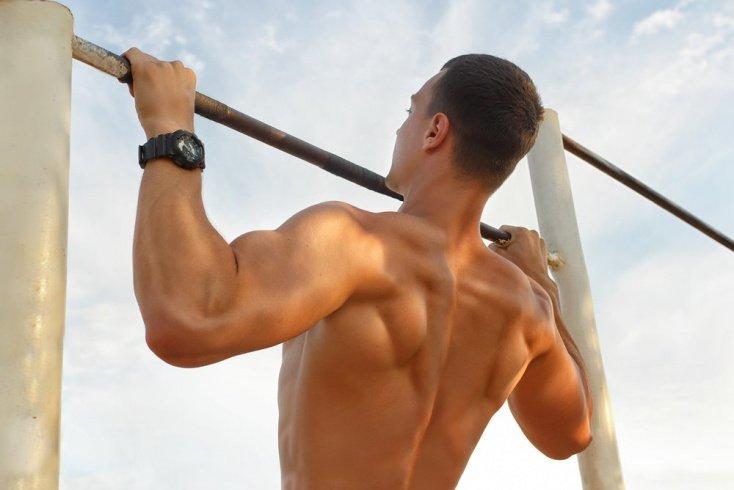 Эффективные фитнес-упражнения в спортзале для увеличения мышц спины