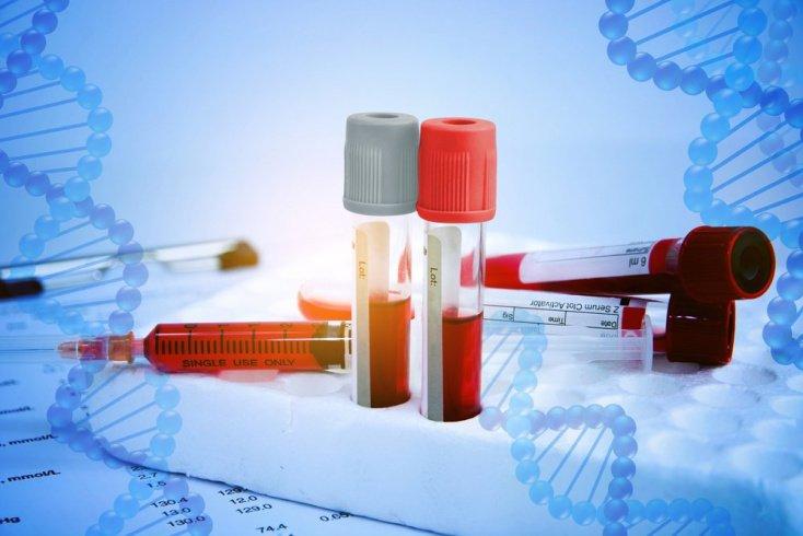 Как проходит тестирование: анализ крови для начала