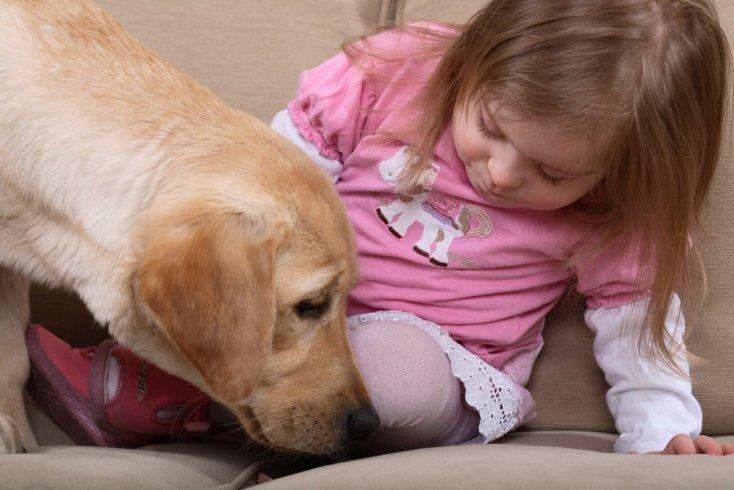 Канистерапия и особенные дети: европейский опыт реабилитации