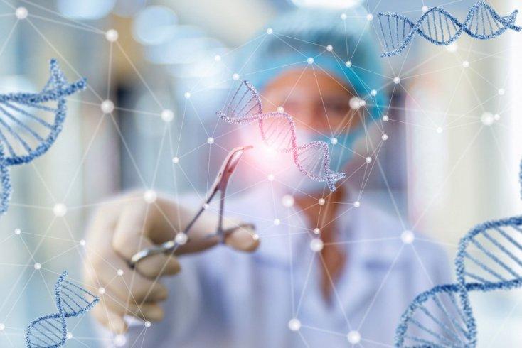 Гены и мутации
