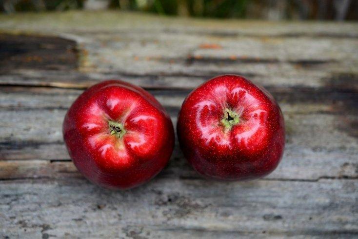 Питание: одно яблоко в день, и никакой доктор не нужен