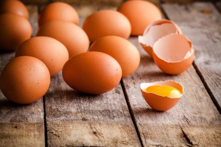 Наука о яйцах
