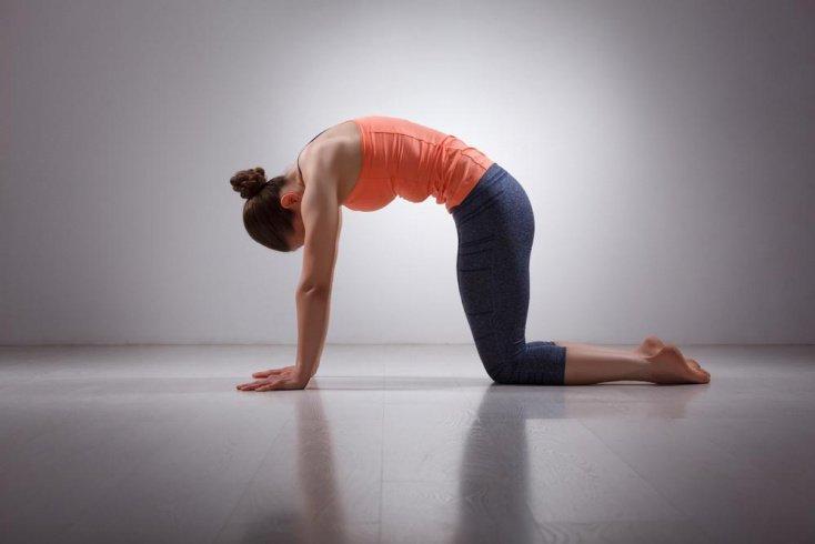 Практика йоги для решения проблем с позвоночником