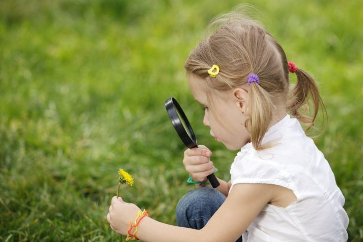 Правильная защита детей от насекомых: памятка родителям