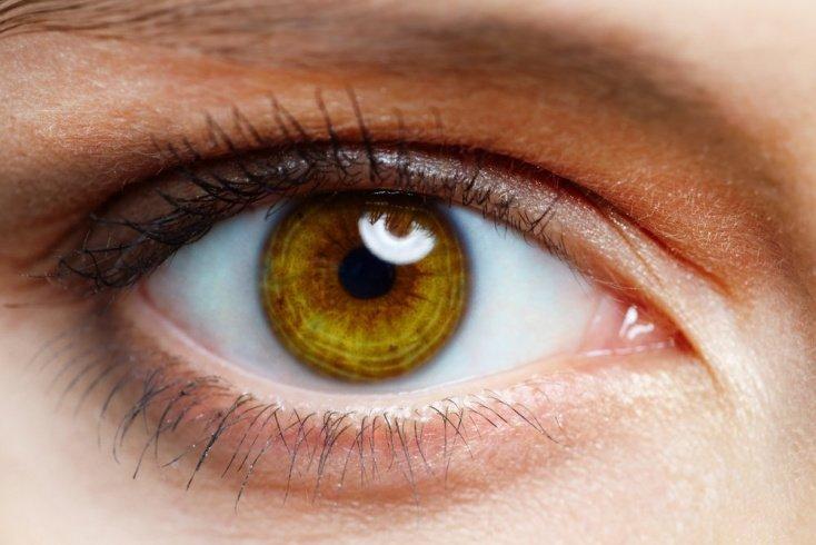 Радужная оболочка глаз и здоровье человека