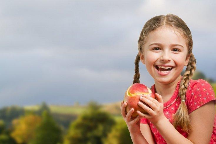 Яблоки в рационе питания малыша: польза для здоровья