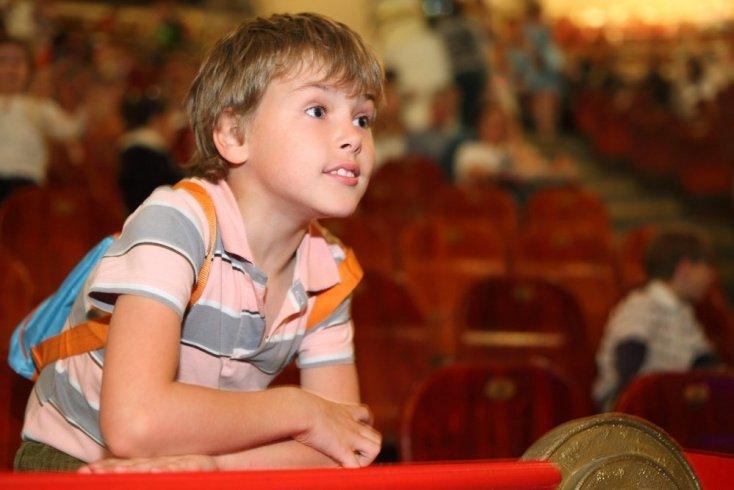Как подготовить малыша к встрече с цирком: советы родителям