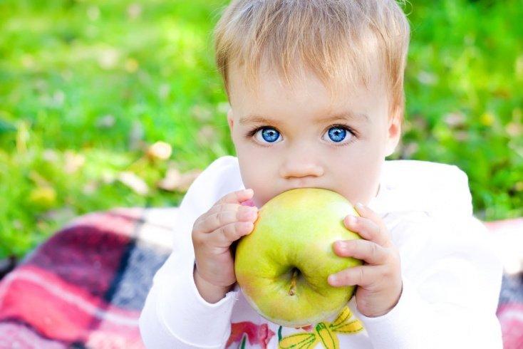 Как организовать питание ребенка