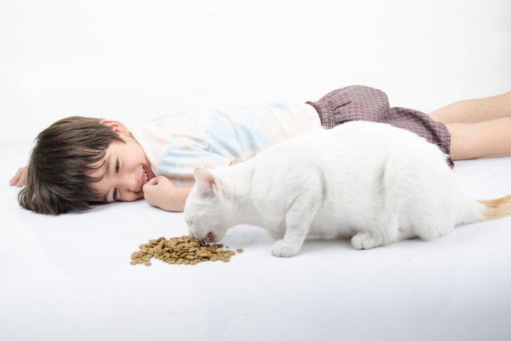Как приучить детей ухаживать животными