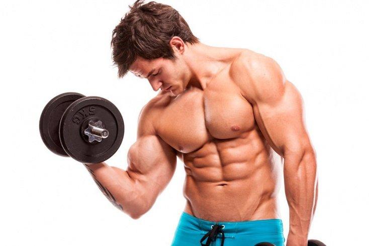 Оптимальная длительность силовой фитнес-тренировки фаната ЗОЖ