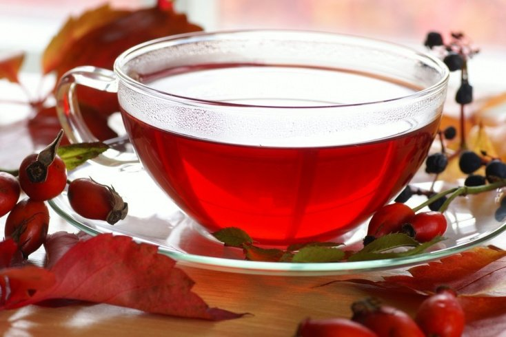 Шиповник — готовьте вкусный чай