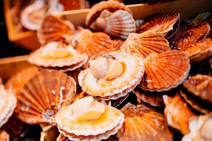 Похудение с диетическим морепродуктом