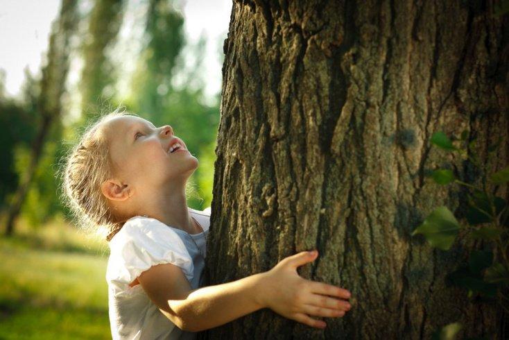 Любовь к природе: необходимость экологического воспитания детей