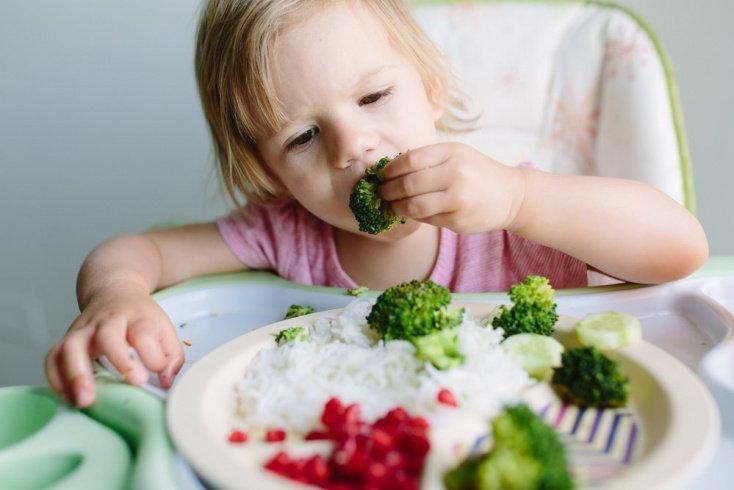 Правильное питание для малышей: брокколи