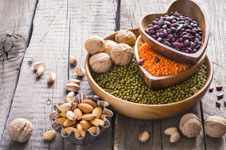 Продукты питания — источники протеина