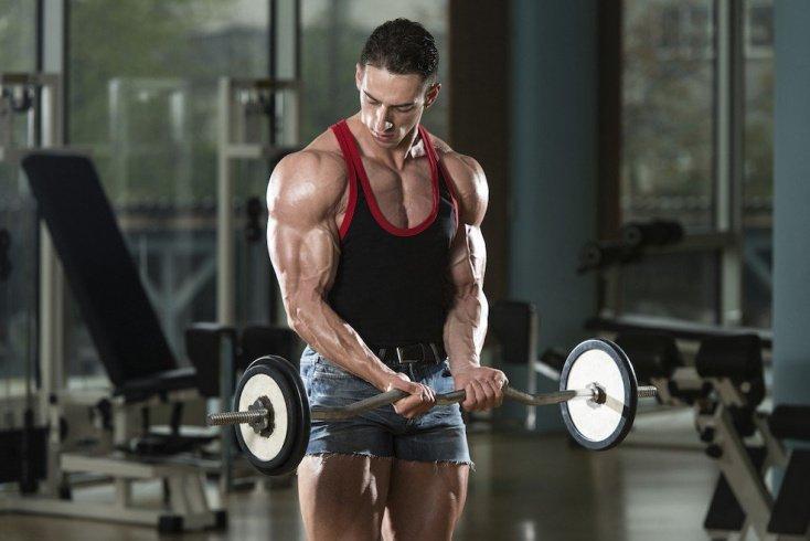 Силовая фитнес-тренировка в спортивном зале для здоровья