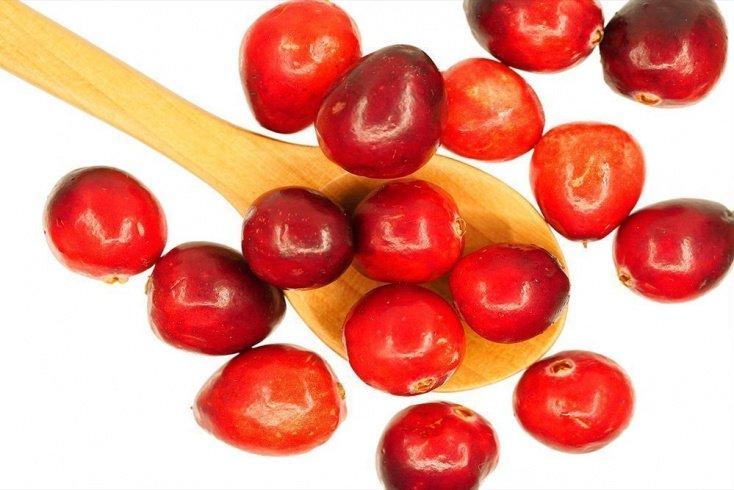 Клюква — применение ягод в лечении цистита