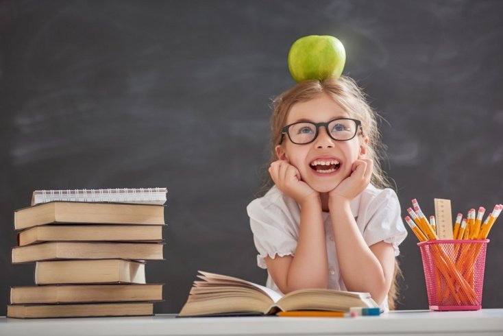 Какие бывают теории детского развития