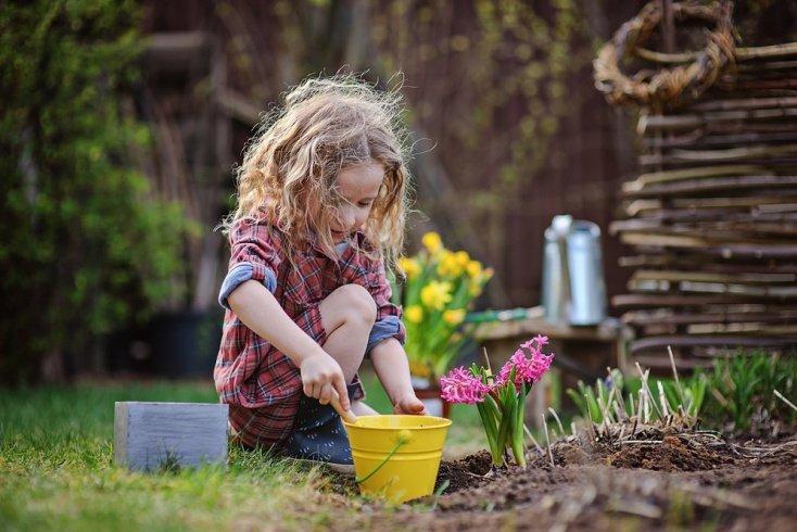 Важность экологической грамотности для детей и взрослых