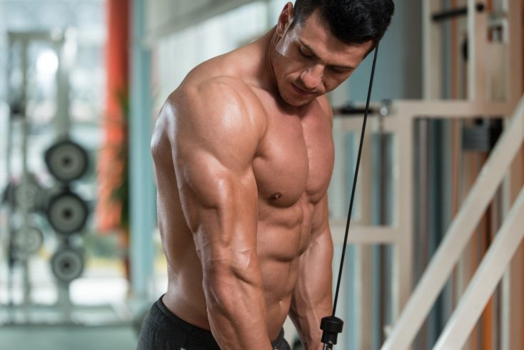Фитнес-упражнения на тренажерах для поклонников ЗОЖ