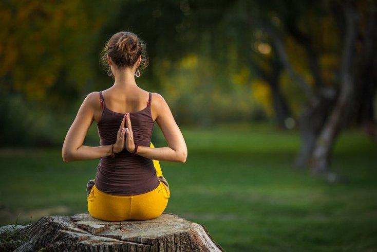 Медитация, дыхательные и физические упражнения йоги