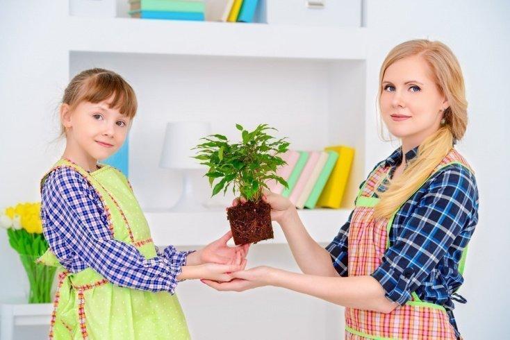 Могут ли быть полезны растения для детей
