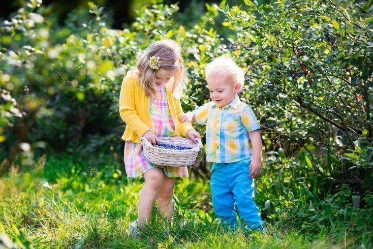 Продукты для ребенка — только из доверенных рук