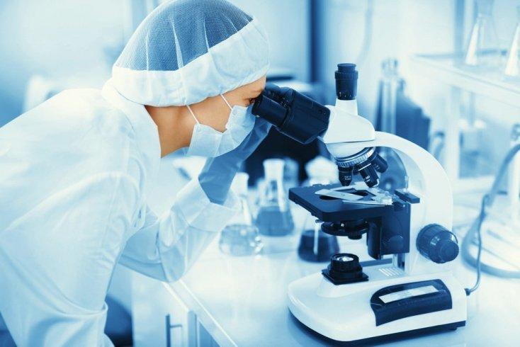 Вирусная теория рака