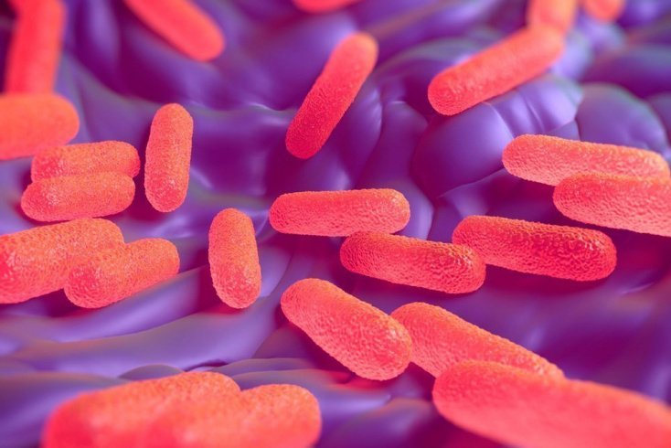 Особенности болезни и пути заражения