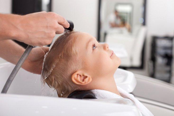 Вшивость у детей: особенности паразитов