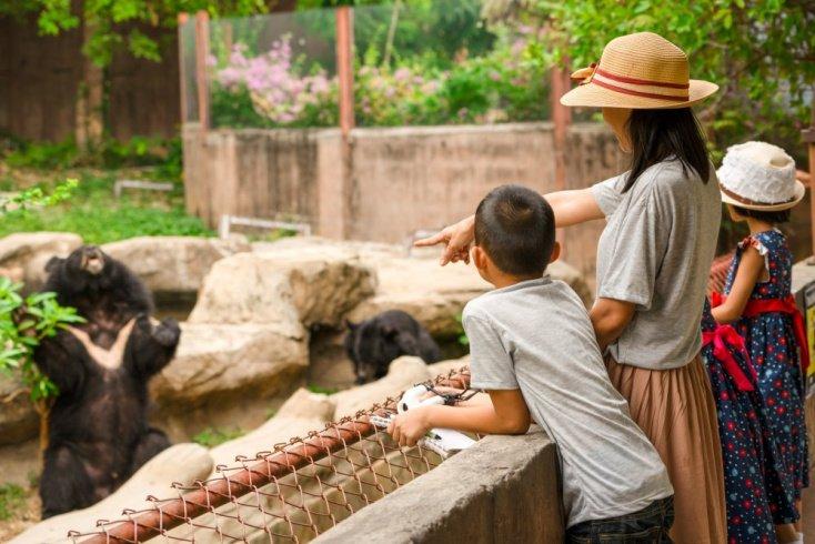 Можно ли заразиться в зоопарке?