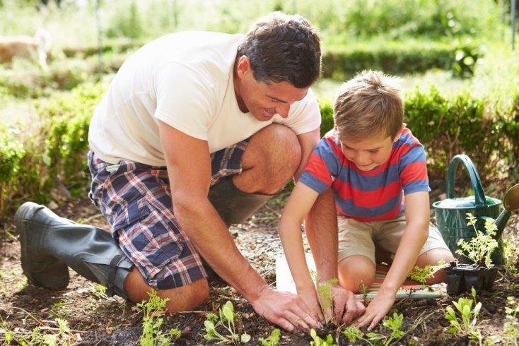 Почему дети отказываются помогать родителям?