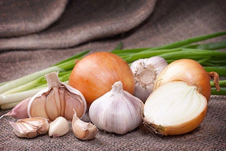 Лук и чеснок — продукты для правильного питания