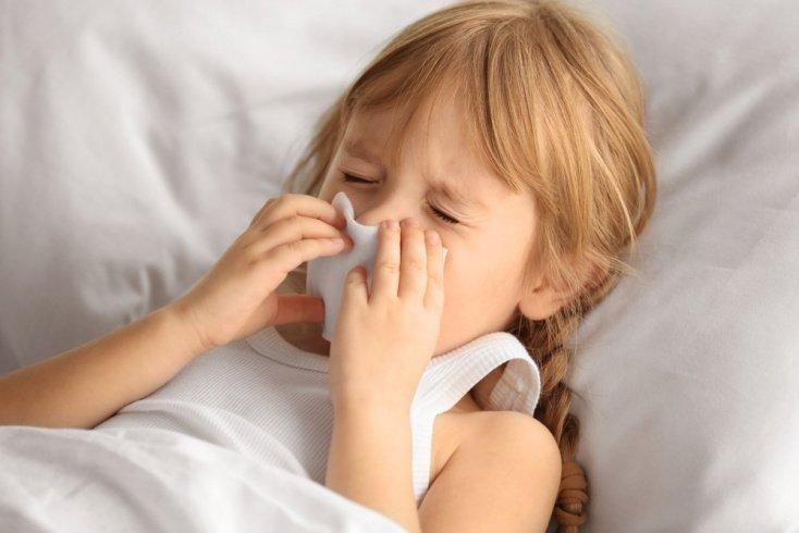 Аллергический насморк и его причины