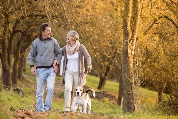 Прогулка с собакой: приятный путь к здоровью