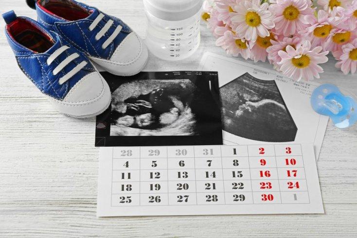Как посчитать примерную дату родов?