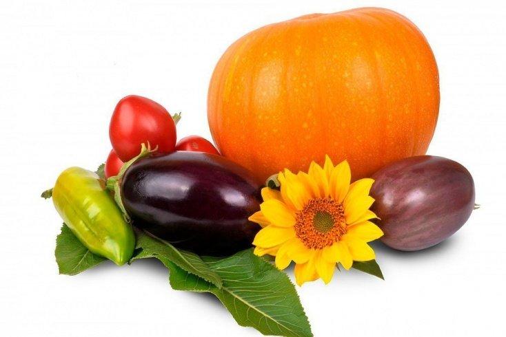 Какие продукты необходимо включить в меню диеты?