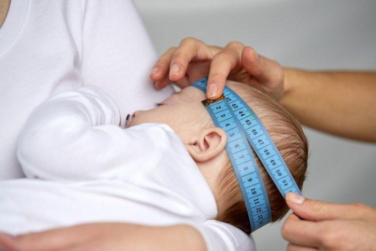 Размер головы в младенчестве: большая голова как признак ума?