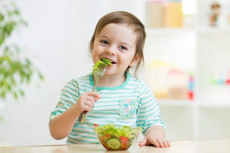 Чем важен режим питания?