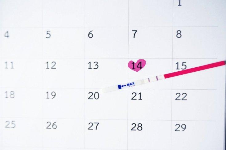 Середина календаря беременности: достижения к 21 неделе